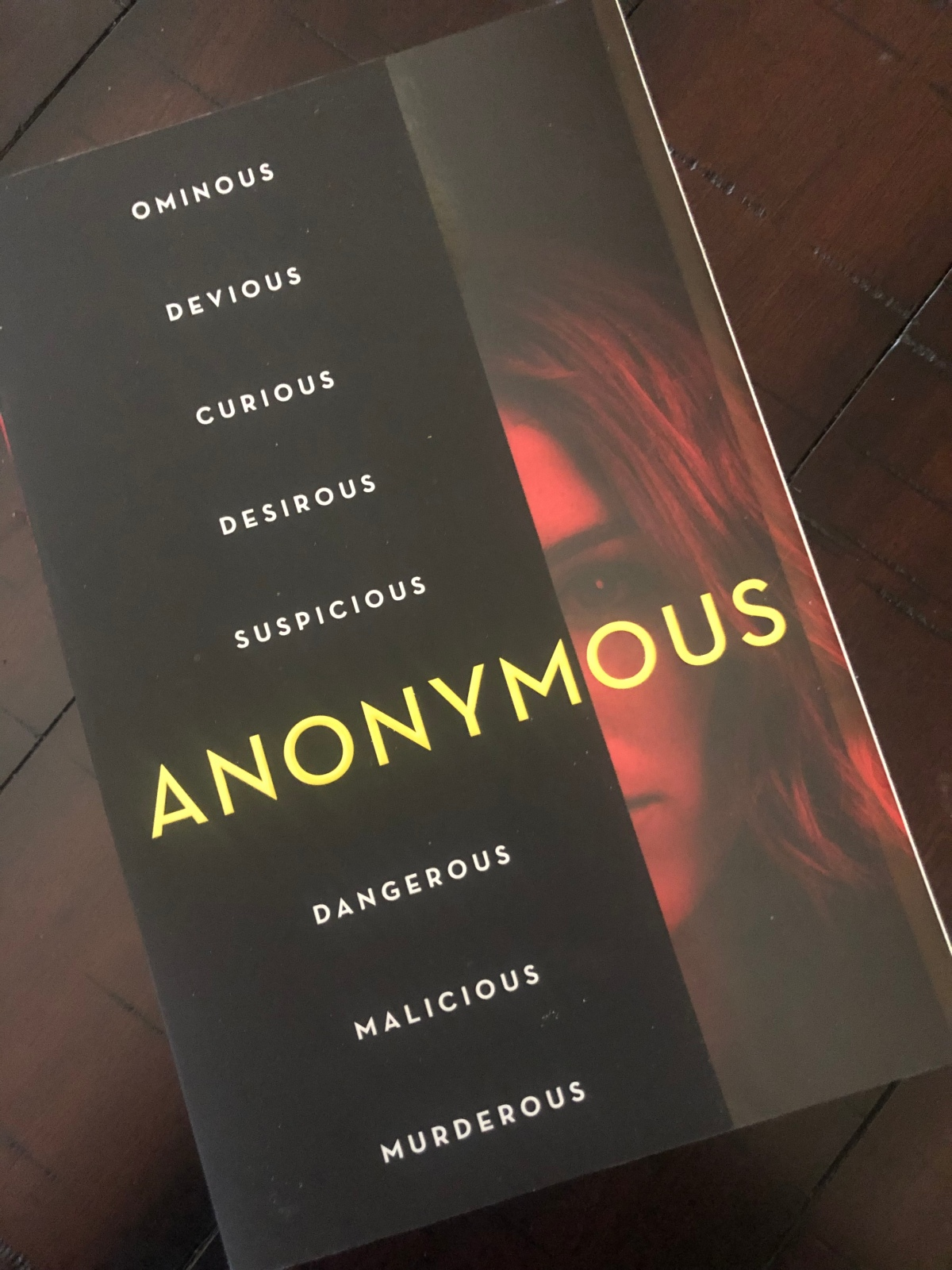 An Anonymous Girl – thenovelgirlreads